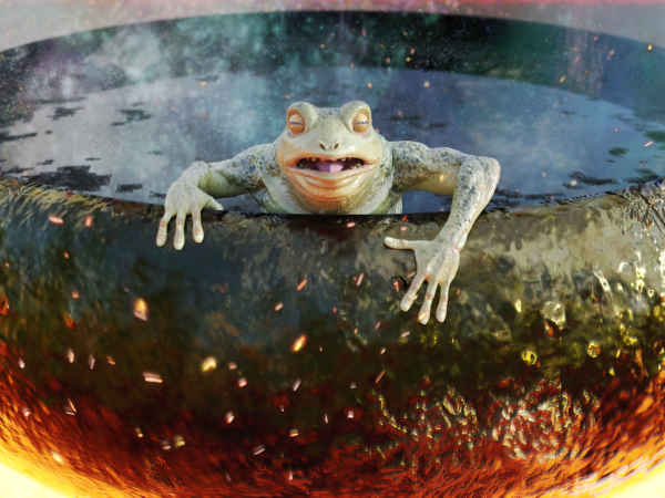 Сварить лягушку